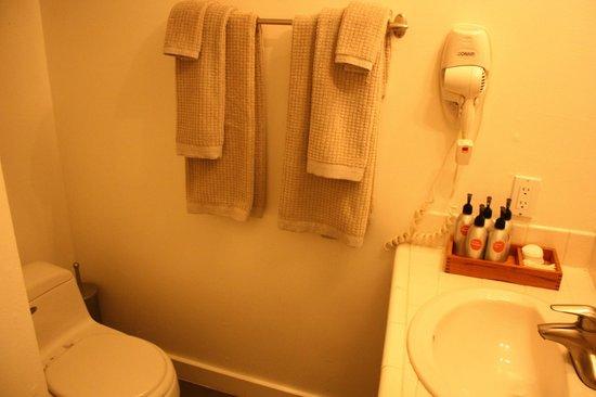 boon hotel & spa : bathroom with Malin + Goetz bath products