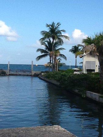 Park Royal Puerto Rico at Club Cala: Beach near yatch club