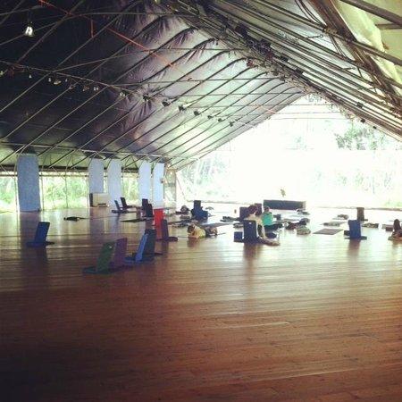 Kalani: Yoga Room