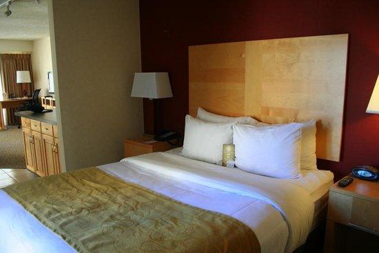 Comfort Suites Michigan Avenue / Loop: Bedroom