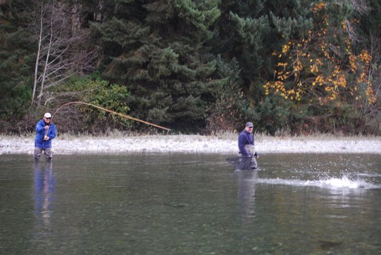 Cowichan River Wilderness Lodge : Spey Rod Fishing for large fresh Coho