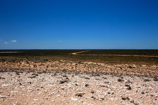 Shark Bay: The long road...wilderness