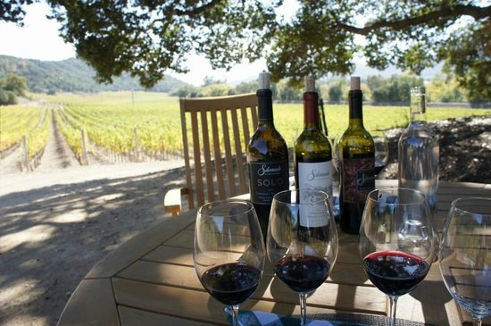 Wine Country Chauffeur: Tasting in the vineyard at Silverado