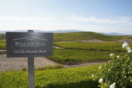 Wine Country Chauffeur: great views at William Hill