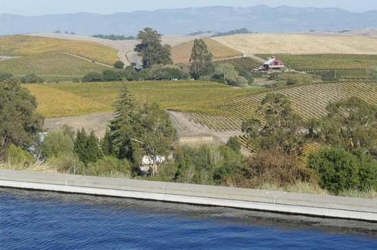 Healdsburg Area Winery Tours: Artesa Winery views