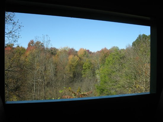Port Stanley Terminal Rail: Fall colours through train window