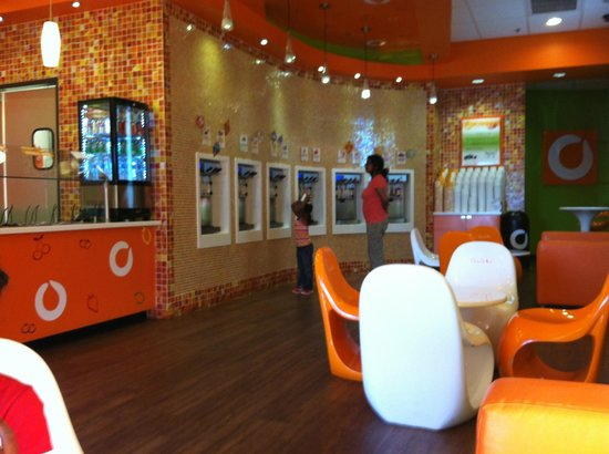 Beau Orange Leaf Frozen Yogurt: Area With All Yogurt Flavors