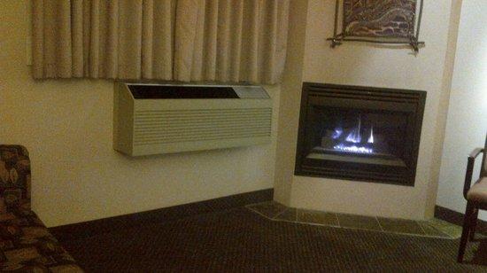BEST WESTERN Pocaterra Inn : Gas Fire - Lovely!
