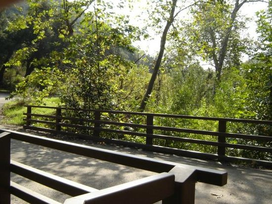 Solstice Canyon: bridge