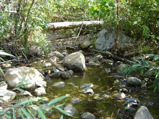Solstice Canyon: the water creek