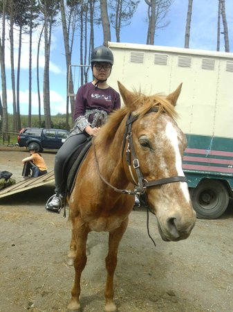 Muriwai Beach Horse Treks: Our first time rider, both horse and rider did very well, good girls