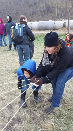 Reindeer Farm : Potatoe Launch