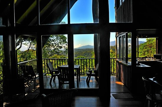 Rose Gums Wilderness Retreat: View from Unit 1