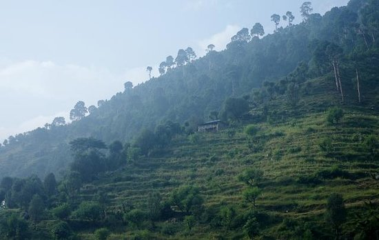 Jamwal Villa Homestay: Mountain on the other side of the river