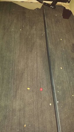 Crowne Plaza Orlando Downtown : Crumbs all over the floor under the sofa bed.