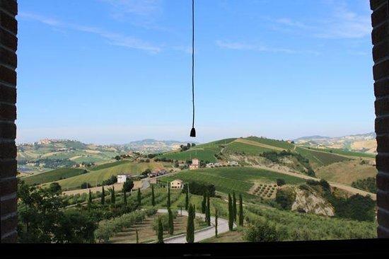 Agriturismo Fattoria Marchetti: view from bedroom window