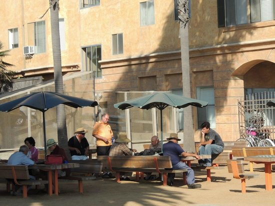 International Chess Park: Safe  and Shady surroundings