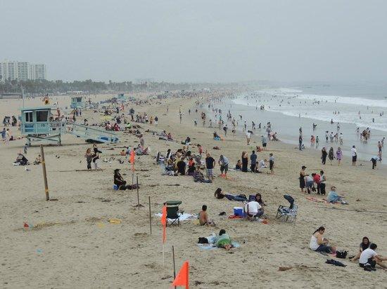 26-Mile Bike Path: Distracting Beach