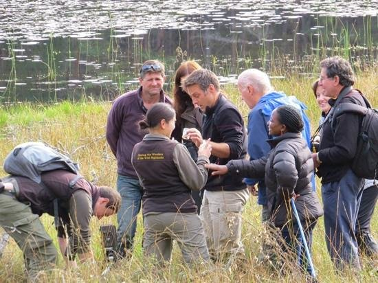 Aigas Field Centre: Part of the group at work with Nick and Alicia at the loch