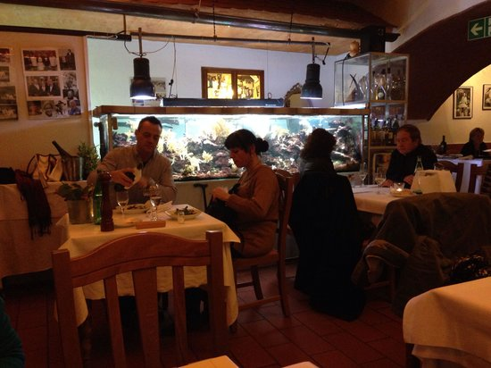Hirschberg an der Bergstr Germany  city pictures gallery : Beautiful Italian moment La Cantina, Weinheim Traveller Reviews ...