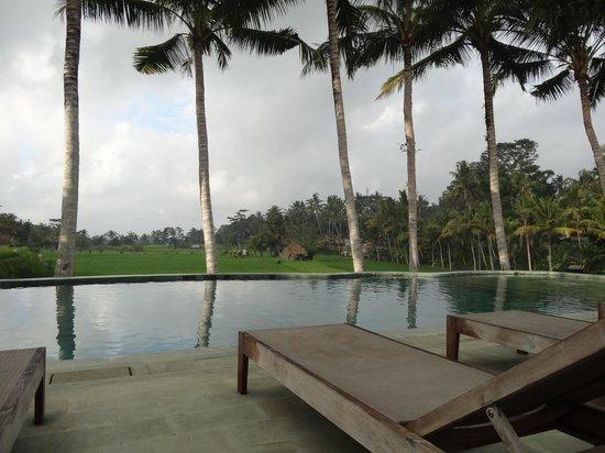 Mathis Retreat: la piscine