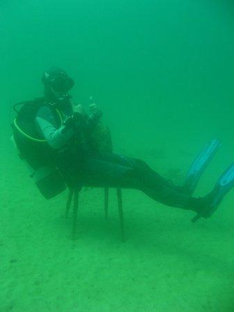 Buddies Dive Cove: Divemaster Dora
