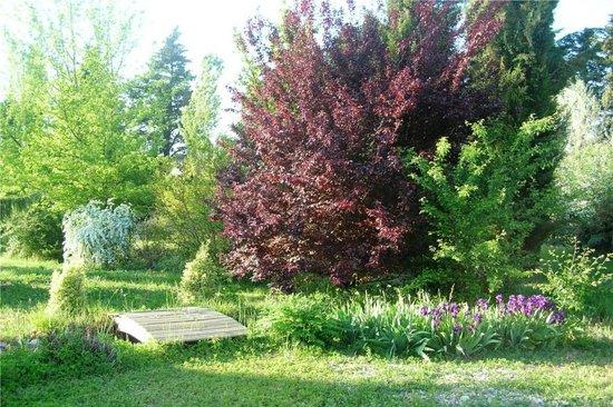 Le Mas de la Cigale Bleue : Garden and bridge