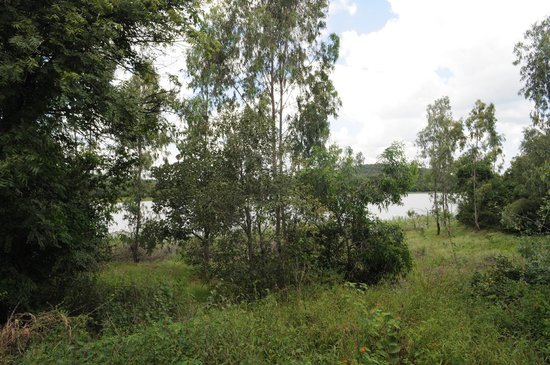 Landscape - Blackbuck Resort: 10