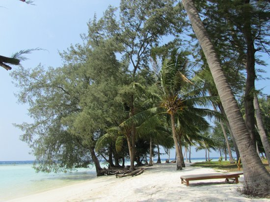 Kura Kura Resort: Eastern Beach