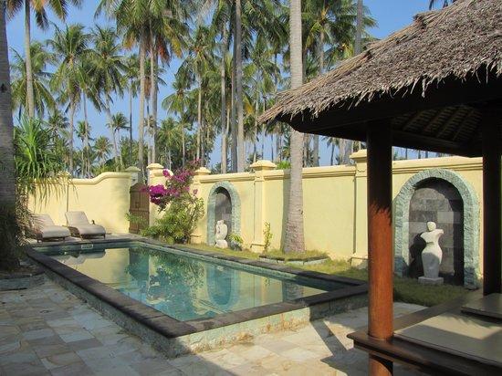 Kura Kura Resort: la piscina della pool villas