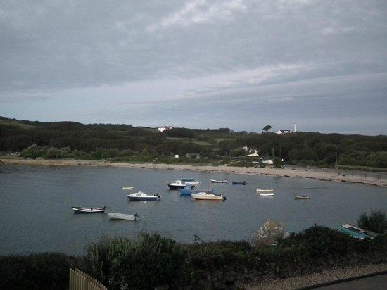 Tolman House: The Harbour