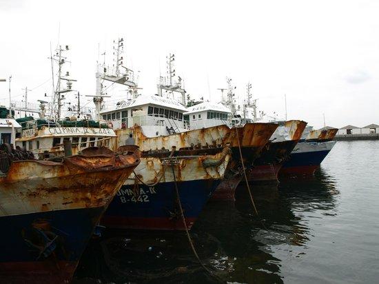 Agadir Fishing Port : fishport agadir