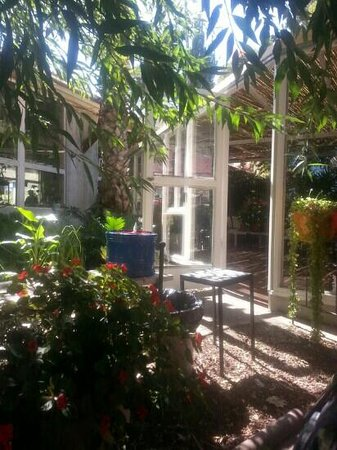 Cafe Itamar: blooming gardens and nursery