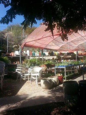 Cafe Itamar: nursery