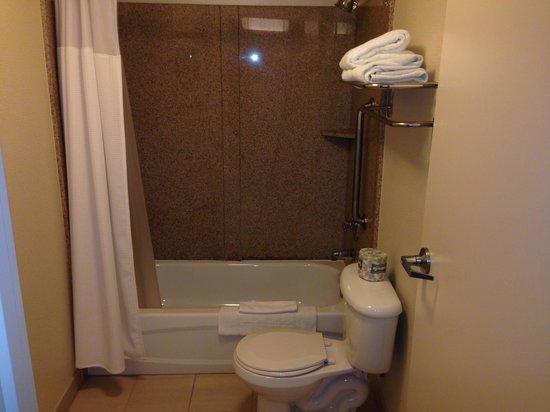 SpringHill Suites Boulder Longmont : Shower Area