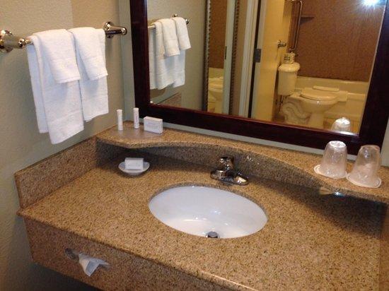 SpringHill Suites Boulder Longmont : Sink
