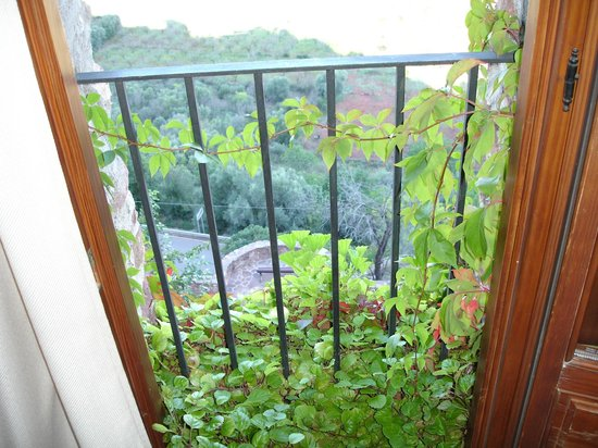 Vista desde la habitacion doble picture of hotel el for Jardin vertical castellon