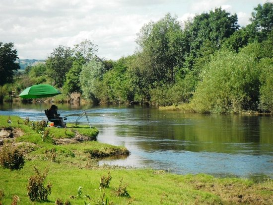 Red Lion Hotel: Coarse fishing on part of our exclusive 4 mile stretch of the Moccas Fishery