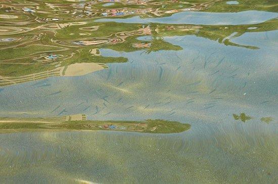 Grecotel Corfu Imperial: Рыбки в прозрачной воде:)