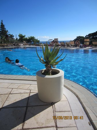 Hotel La Vega : view from the pool