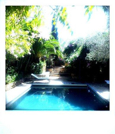 Les Terrasses: Pool 1