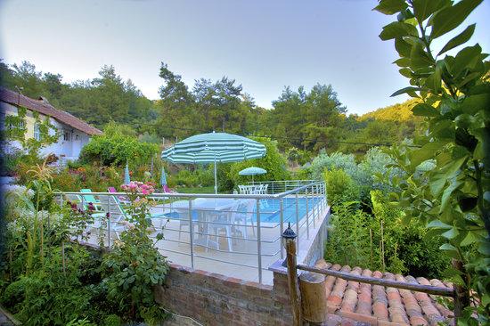 Ephesus Boutique Hotel : Pool