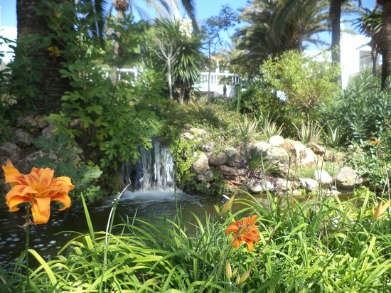 Macdonald Leila Playa Club: waterfall and beautiful gardens