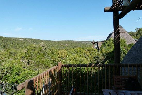 Matyholweni Rest Camp: Vista desde la cabaña