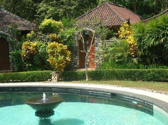 Sari Sanur Resort : Area around the pool