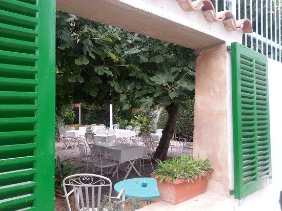 Restaurante Bellaverde: hidden gem