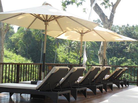 Natura Resort and Spa : La piscine