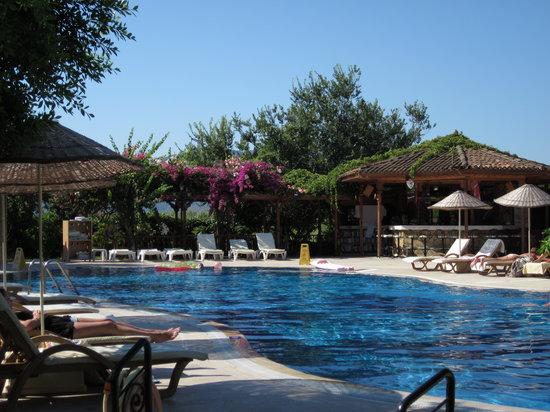 Asur Hotel & Aparts & Villas: The Pool