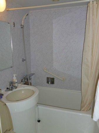 Hotel Princess Garden : Clean but small bathroom