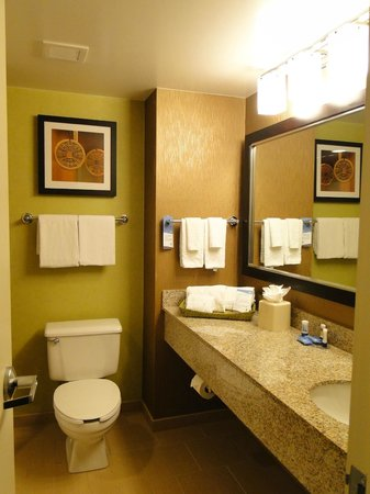 Fairfield Inn & Suites by Marriott Washington, DC/Downtown : Bathroom
